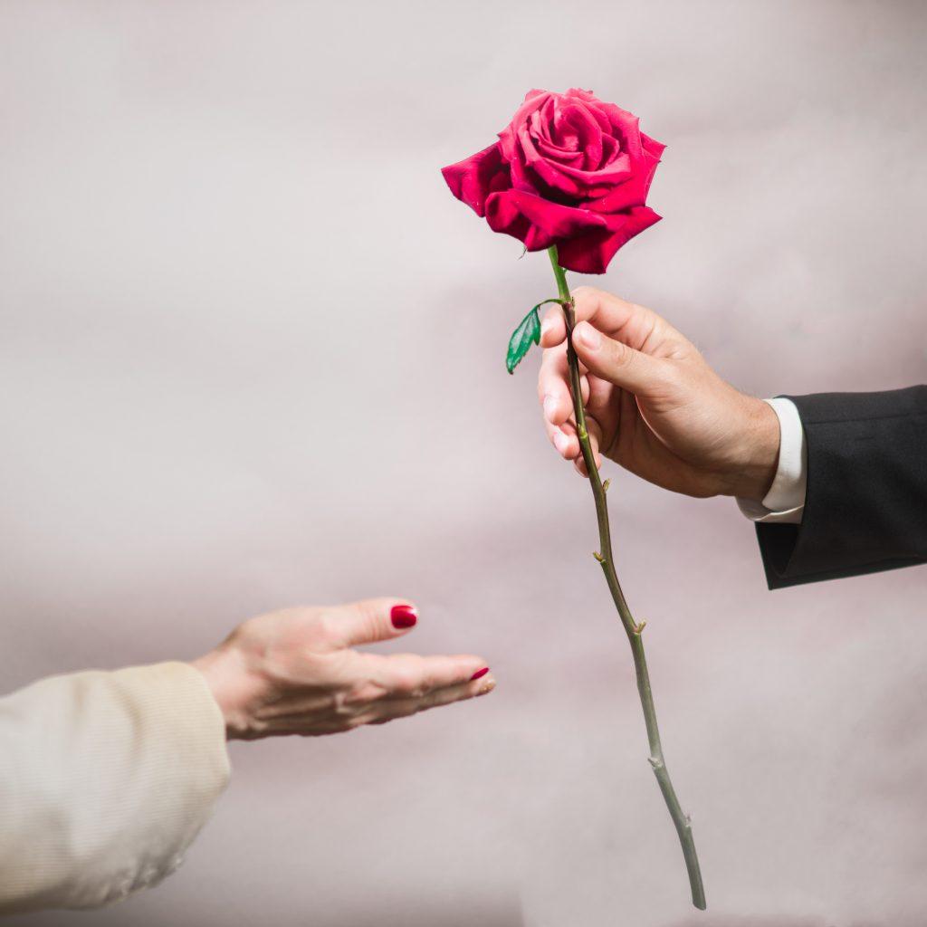 Un homme offre une rose à une femme