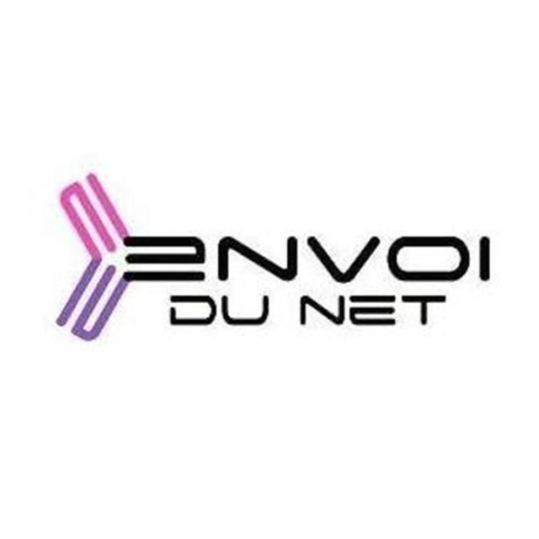Logo de l'entreprise Envoi du Net