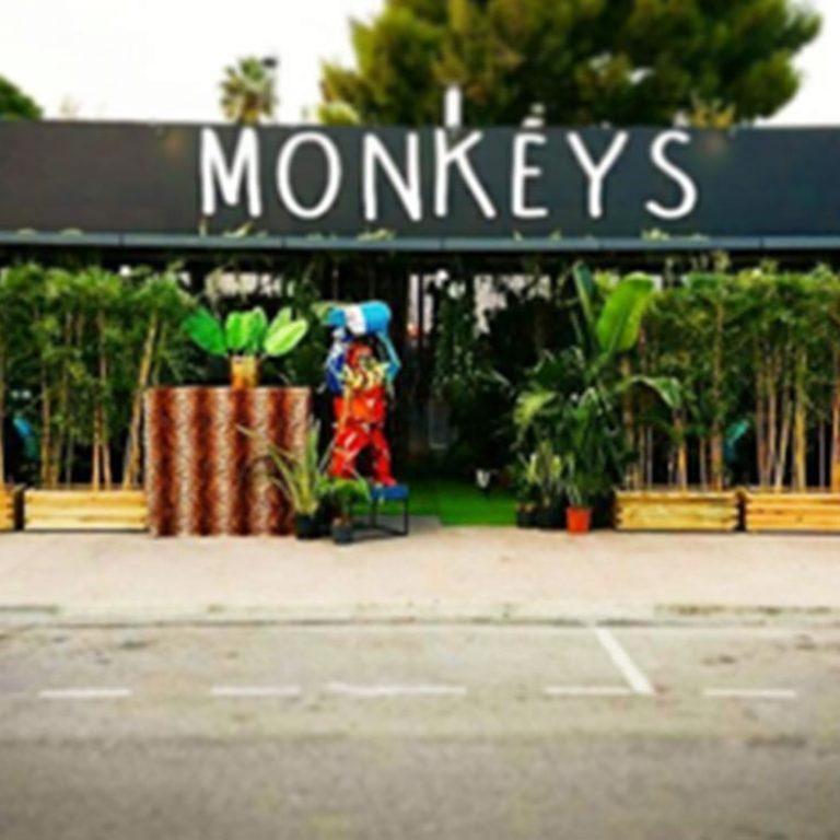 Terrasse du restaurant Monkeys